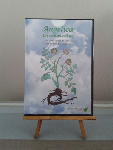 DVD Angelica
